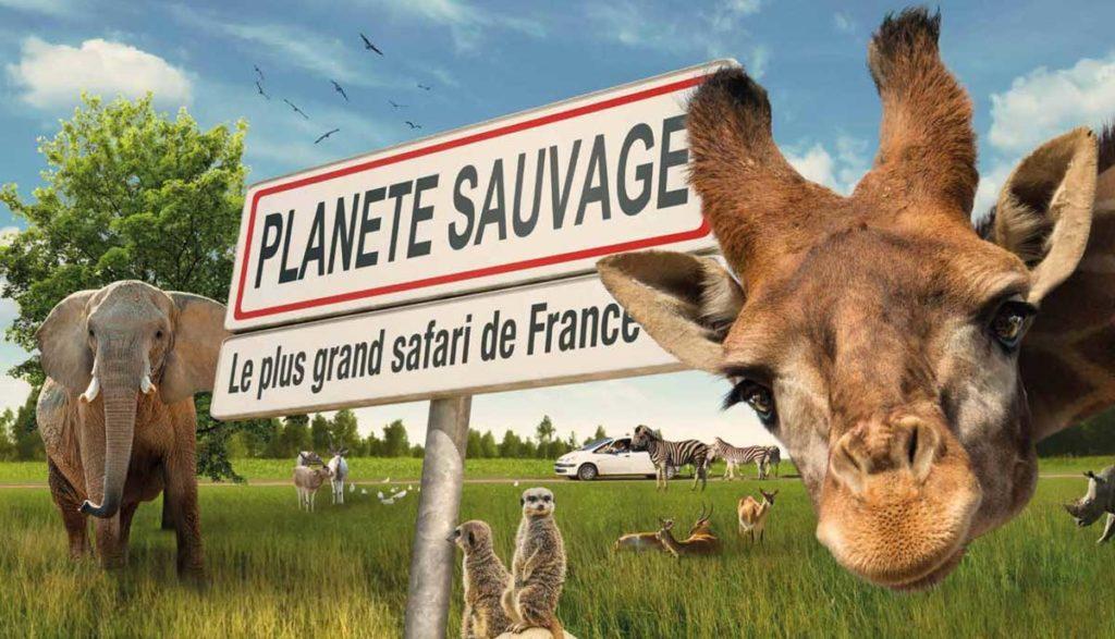 Autocar - Planète Sauvage Safari