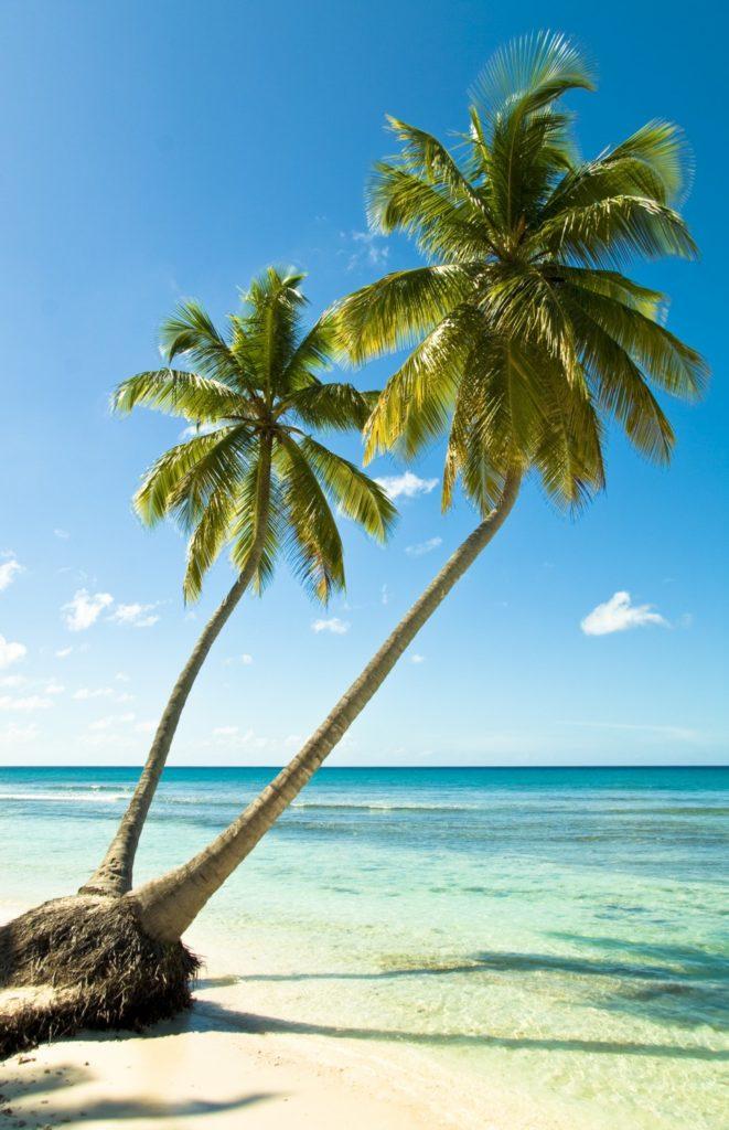 Séjour voyage en République Dominicaine